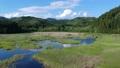 空撮 美しい沼地 湿原 湿地 53724934