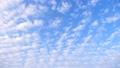 清晨的雲(四月) 53725421