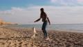 柴犬 ジャンプ 跳ねるの動画 53785687