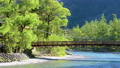 Fresh green Kamikochi-Kodo Bridge and Kamogawa Flow FIX 53820646