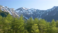 Larch forest and Hotaka mountain range PAN seen from fresh green Kamikochi-bus terminal parking lot 53821054