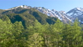 Larch forest and Hotaka mountain range PAN seen from fresh green Kamikochi-bus terminal parking lot 53821055