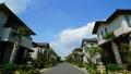 タイムラプス 新緑の新興住宅地 流れる雲 ズームアウト 53857467