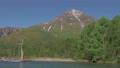 新緑の焼岳 長野県上高地 54052468