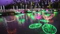 沖縄 冬の東南植物楽園 水上楽園の池 イルミネーション 54209402