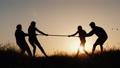 Family having fun in nature - playing tug of war 54254194