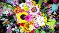 Flower_Paint Stroke_RGB_Black Background 54270365