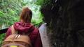 女性 ウォーキング 歩くの動画 54272982