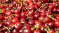 A lot of sweet cherries in the box. view from above. background, texture 54283822