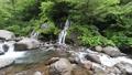 新緑の吐竜の滝 54286329