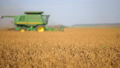 Natural view of combine harvester gathering soy beans at sunny day on the background of rural 54565750