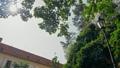 Panoramic 4K Shot of Mikulov Castle Courtyard in Summer, Czech Republic, Europe 54586539