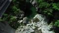 面河川의 신록 공중 촬영, 面河 블루에 빛나 54656607