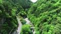 面河川의 신록 공중 촬영, 面河 블루에 빛나 54656664