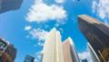 東京 新宿高層ビル街 タイムラプス 超ワイド 魚眼で見上げる摩天楼の青空と雲 ズームイン  54660590