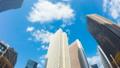 東京 新宿高層ビル街 タイムラプス 超ワイド 魚眼で見上げる摩天楼の青空と雲 ナロー 54660593