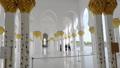 Abu Dhabi,Sheikh Zayed Bin Sultan Al Nahyan Mosque 54668107