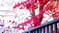 Gotokuji colored leaves and beckoning cat 54782641