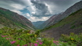 Panoramic view of beautiful mountain landscape in the Alps with green mountain pastures with flowers 54831108