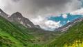 Mountain green valley landscape. Beautiful mountain green valley panorama. Mountain meadow flowers 54831741