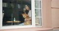 Beautiful woman drinking tea in cafe and hugging cute shiba inu dog 54946178