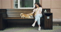 Female dog owner caressing shiba inu puppy sitting on bench in street cafe 54946186