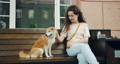 Happy young woman petting cute shiba inu puppy sitting on bench outdoors in cafe 54946189