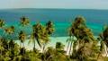 Tropical island with sandy beach. Balabac, Palawan, Philippines. 55057543