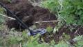 Treasure hunter with metal detector scanning land 55058186
