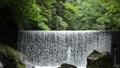 森をバックに十曽川の堰 55082192