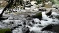 石の間をぬう十曽川の流れ 55082194