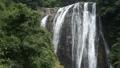 森と龍門滝の落水 55082195