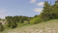 Handheld shot of nature hills with green glade and trees at sunny day. 55144037