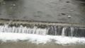 川の流れ 55427737