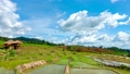 農場 景色 風景 55428902