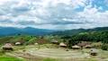農場 景色 風景 55428903