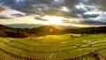 農場 景色 風景 55428906