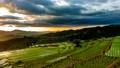 農場 景色 風景 55428907