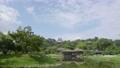 彥根城堡Genkyen 55471691