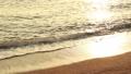 바다와 석양 55528454