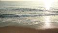 바다와 석양 55528459