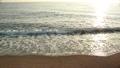 바다와 석양 55528461