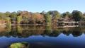 11月秋 紅葉の浮見堂-奈良の秋- 55530835