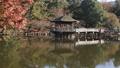 11月秋 紅葉の浮見堂-奈良の秋- 55530837
