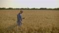 農作物 農民 野原の動画 55554726