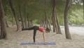 Asian woman practicing yoga 55593553