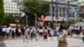 東京 渋谷 真夏のスクランブル交差点 55702950