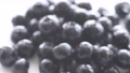 Blueberry, fruit tree, fruit, white background, fruit, harvest, agriculture 55986444
