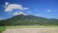 Mt. Tsukuba rice harvesting 55999066