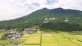Tsukuba mountain fruit 56042840